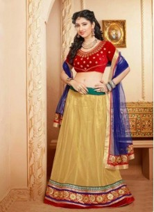 Adorable embroidery work lehenga choli