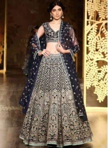 Aesthetic Blue Embroidered Work Lehenga Choli