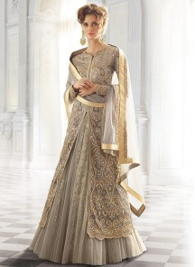 Dazzling georgette and net Anarkali Suit