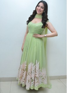 Gorgeous Light Green Thread Embroidered Ready-made Pleated Gown